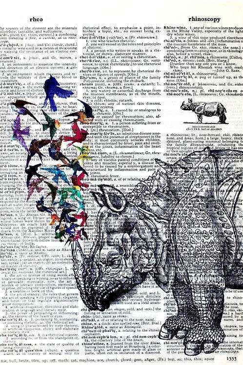 Rhino Birds - AW00031