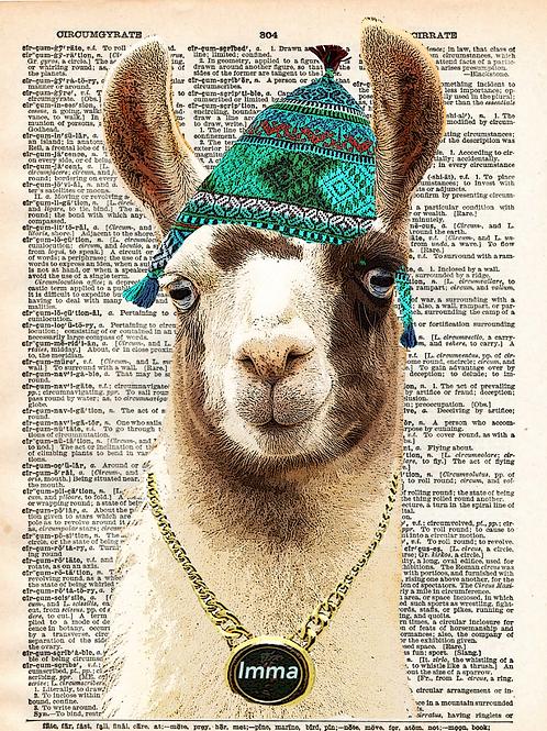 Imma Llama - AW00543