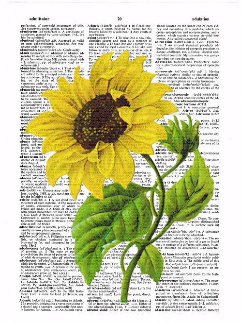 Sunflower - AW00184