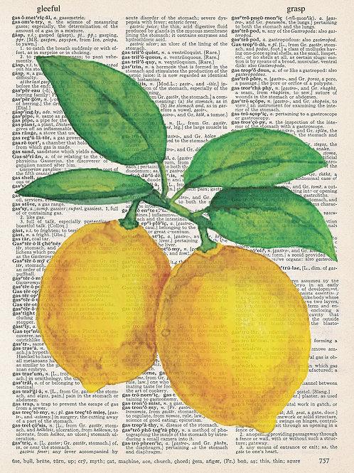 Lemons - AW00377