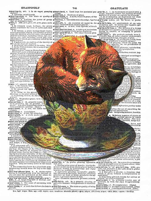 Teacup Fox - AW00034