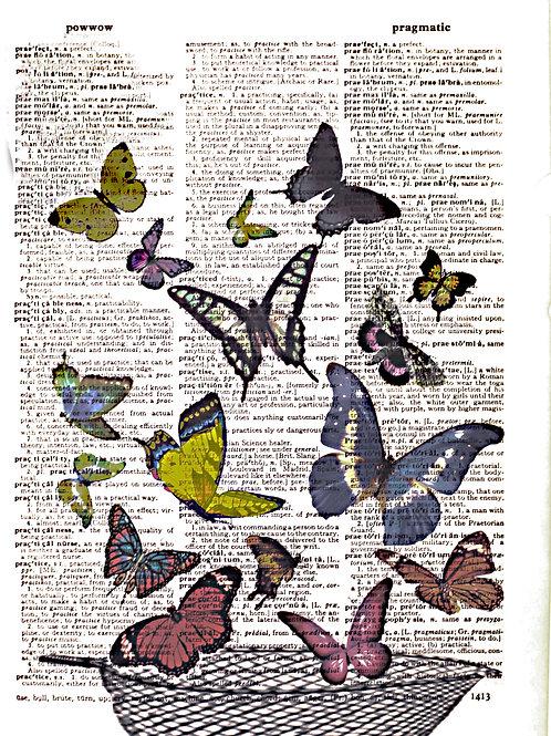 Butterfly Net - AW00048