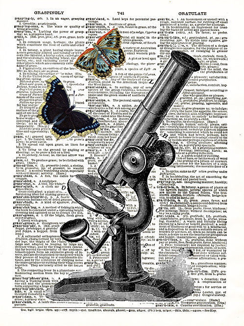 Butterfly Microscope - AW00047