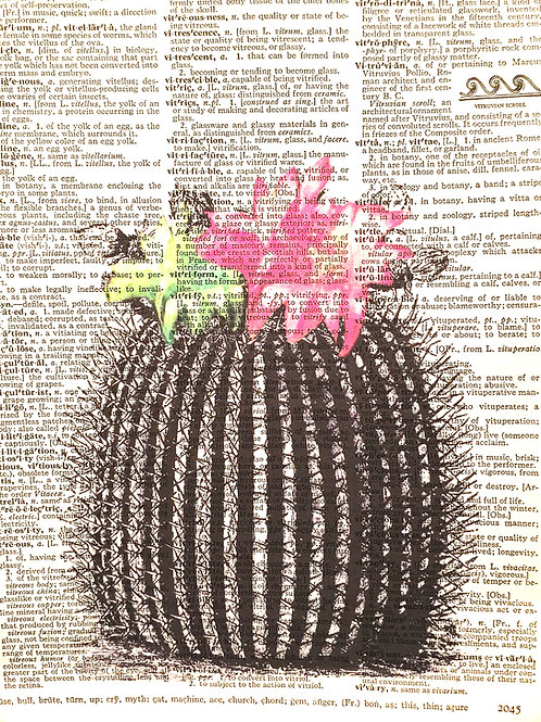 Cactus Flower - AW00385