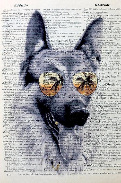 Miami Dawg - AW00076