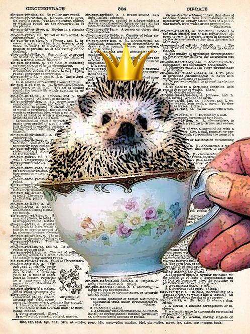 Hedgehog - AW00555