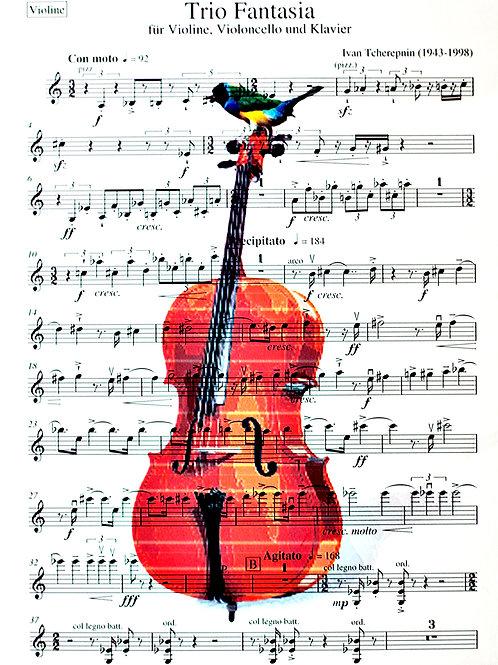 The Cello Bird (Sheet Music) - AW00608