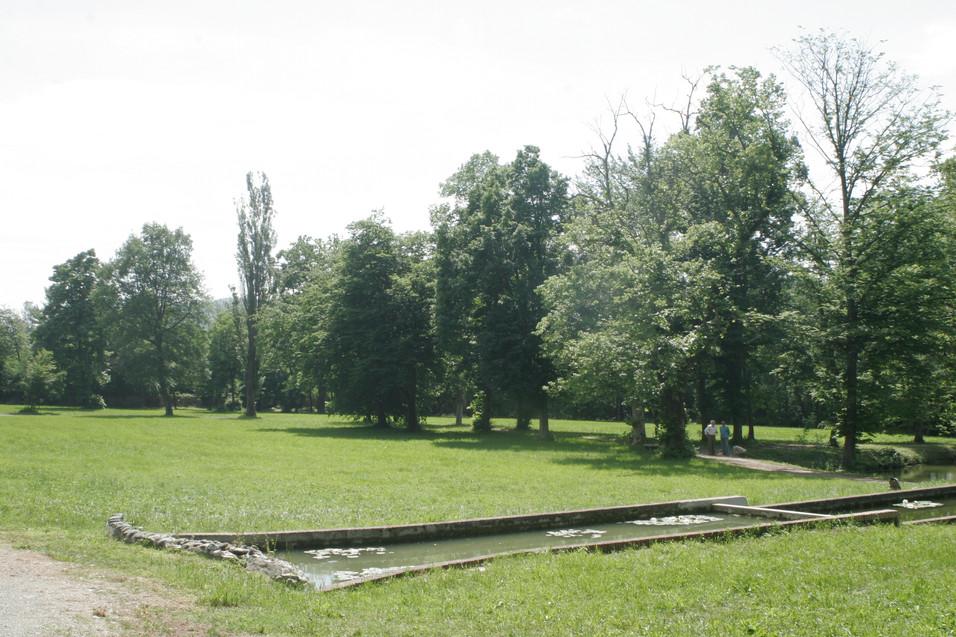 Terrazze e parco  - 8.jpg
