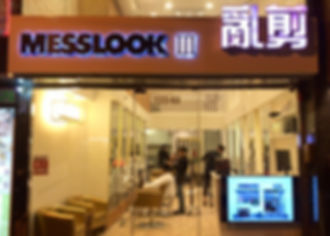 MessLook III