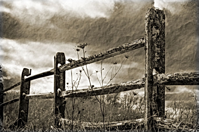 Rustic Log Fence | Todds of Carson's Fork