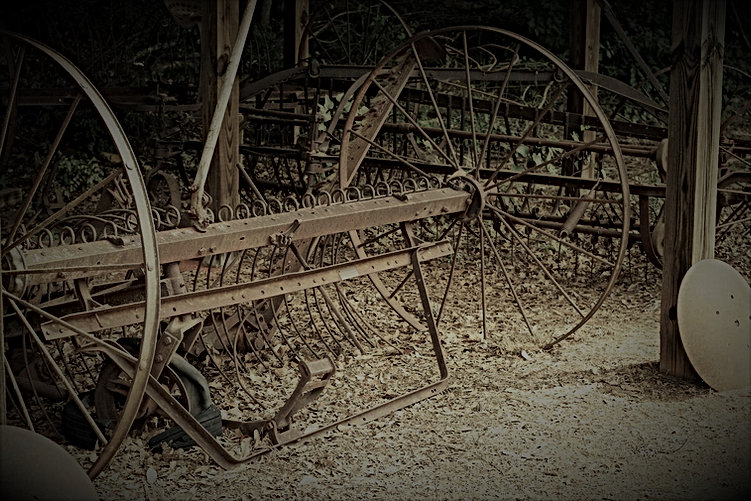 Rustic Tiller  | Todds of Carson's Fork