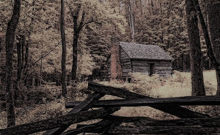 Rustic LogCabin | Todds of Carson's Fork