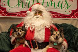 Santa Paws 2019- (1)