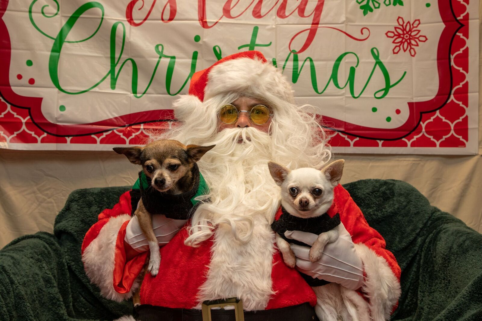 Santa Paws 2019- (29)