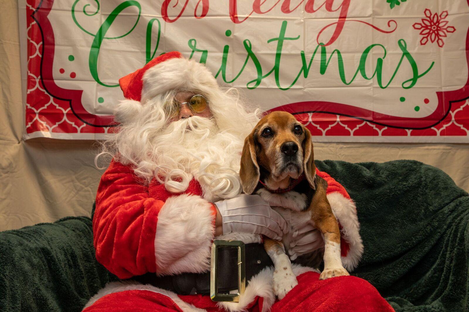 Santa Paws 2019- (25)