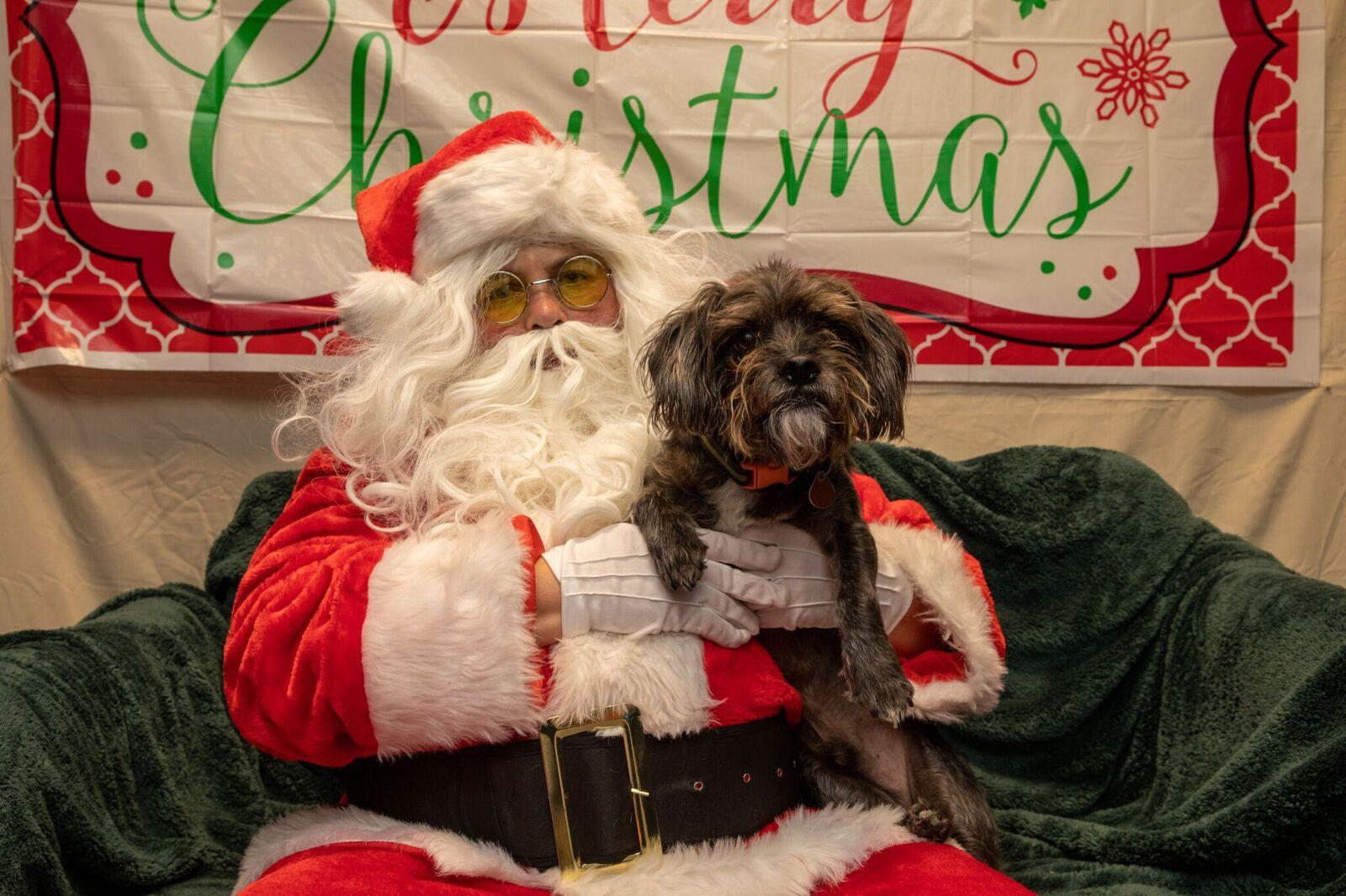 Santa Paws 2019- (22)