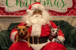 Santa Paws 2019- (11)