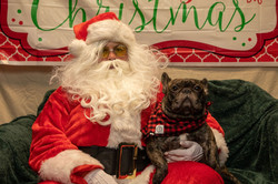 Santa Paws 2019- (14)