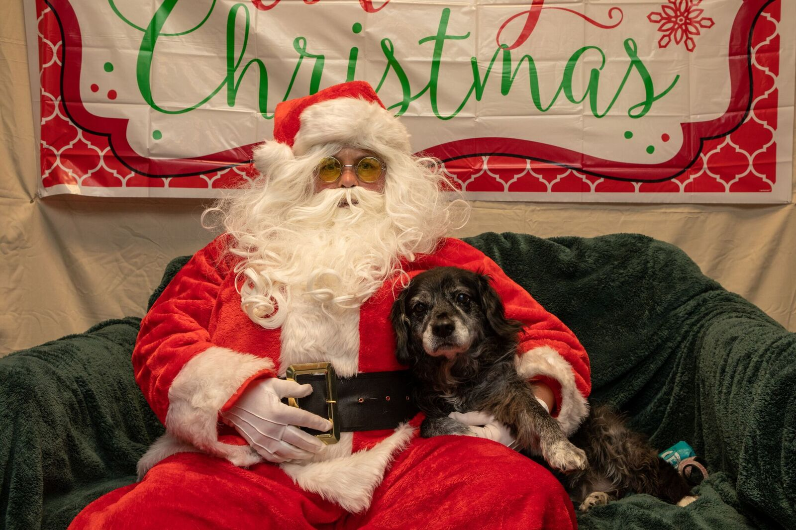 Santa Paws 2019- (15)