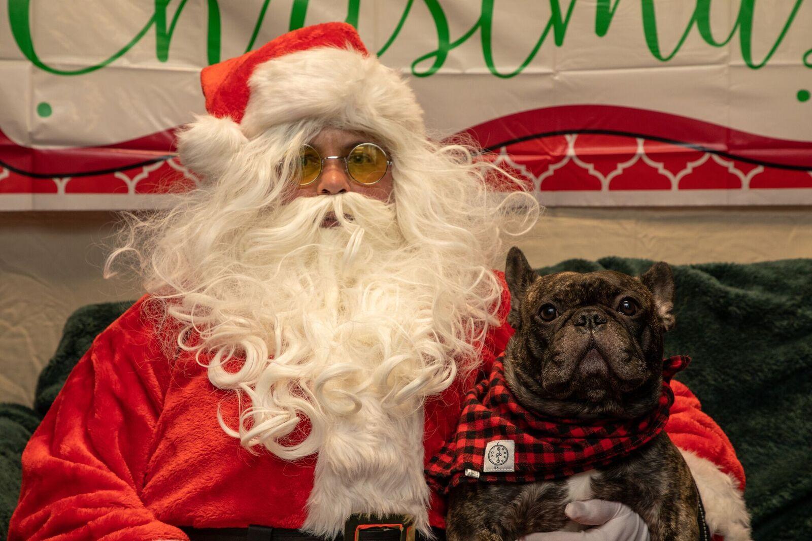 Santa Paws 2019- (3)