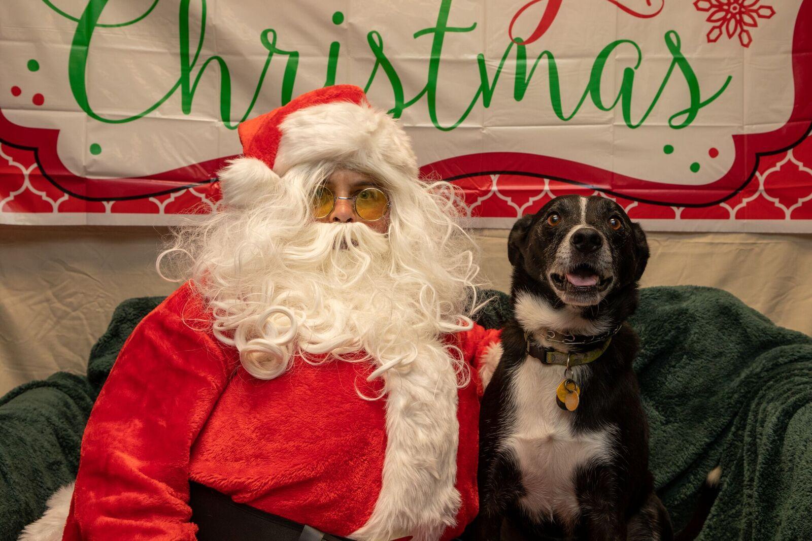 Santa Paws 2019- (8)