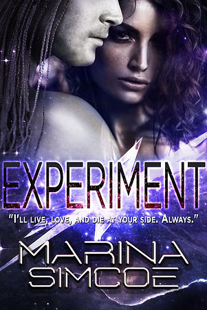 Experiment_ebook_cover SMALL_edited.jpg
