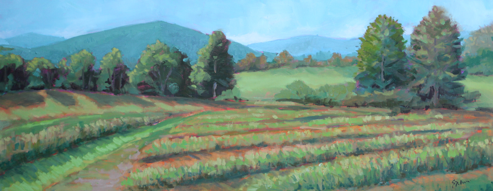 Dolamore-Mountain Valley  Farm-oil-16x40