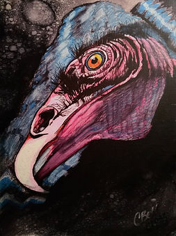 Chris Bell_Turkey Vulture_Alcohol Ink &