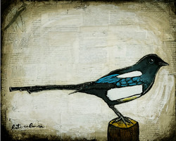 Coleman_Kate_The Magpie_acrylic_16x10
