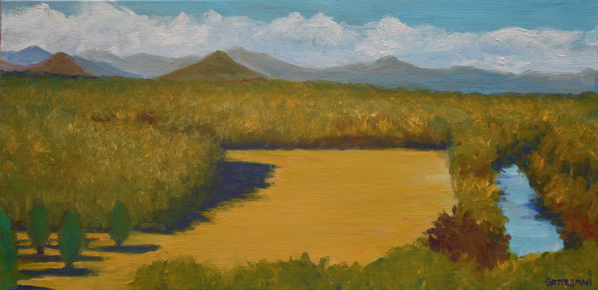Gottesman_Rebecca_Field of Gold_Oil_10x2