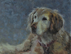 Veatch, Patricia_Russel's Beast_oil_11x1