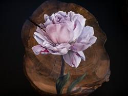 'Full Bloom Peony'