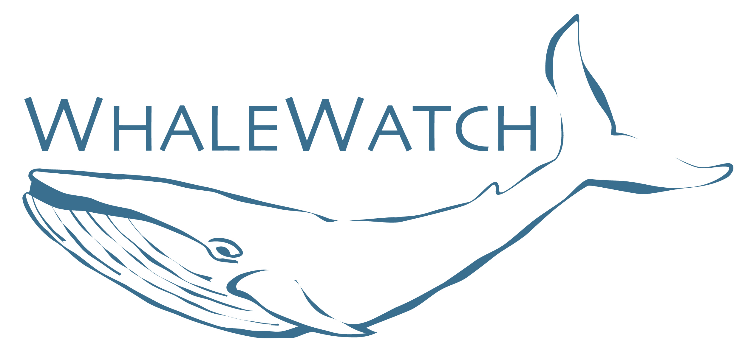 whalewatch logo copy.jpg