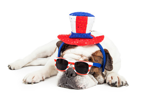 Celebrate Pet Safety this Memorial Day