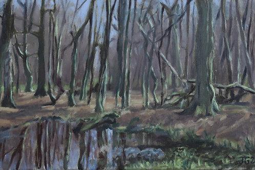 Goose pond in Penn woods