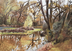 (Oil study) Pond on Cadmore End common