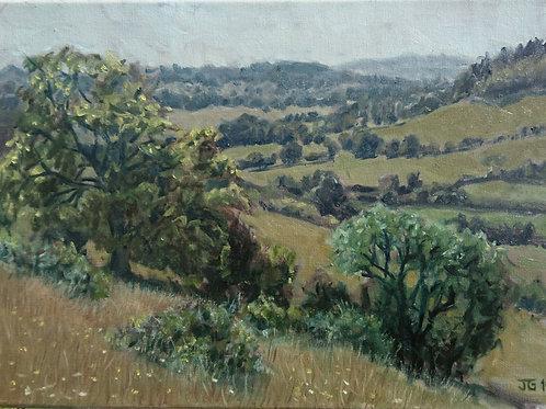 Summer in Turville valley
