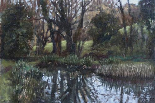 Muddy pond, Penn
