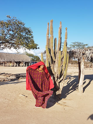Wayuu Dancing Girl.jpg