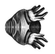 Digital Hand Study #3