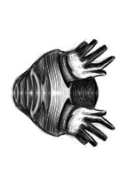 HAND STUDY 2.jpg