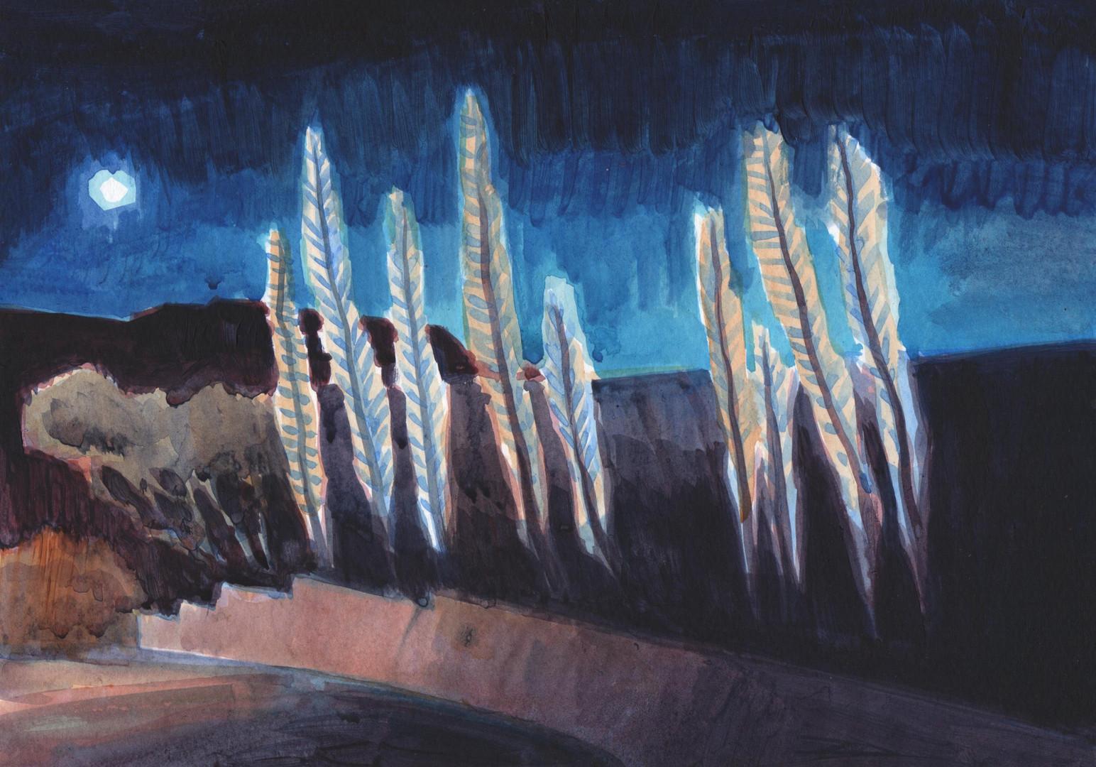 Echiums in Winter (Night)