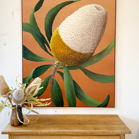 Betsy Banksia
