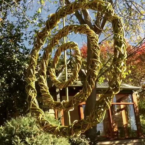 Willow Swaying Rings