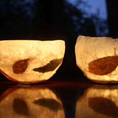 Leaf Lights - Coated tissue paper infused with leaves