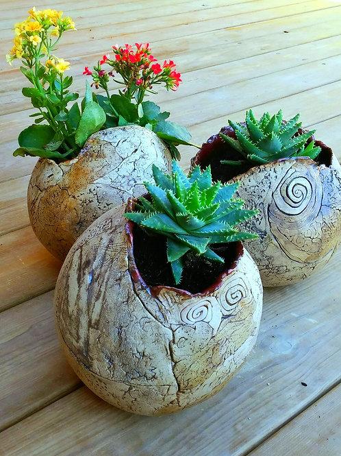 Earthy planters