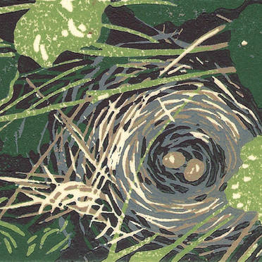 Bird Nest - Multicolor Linoleum Block Print