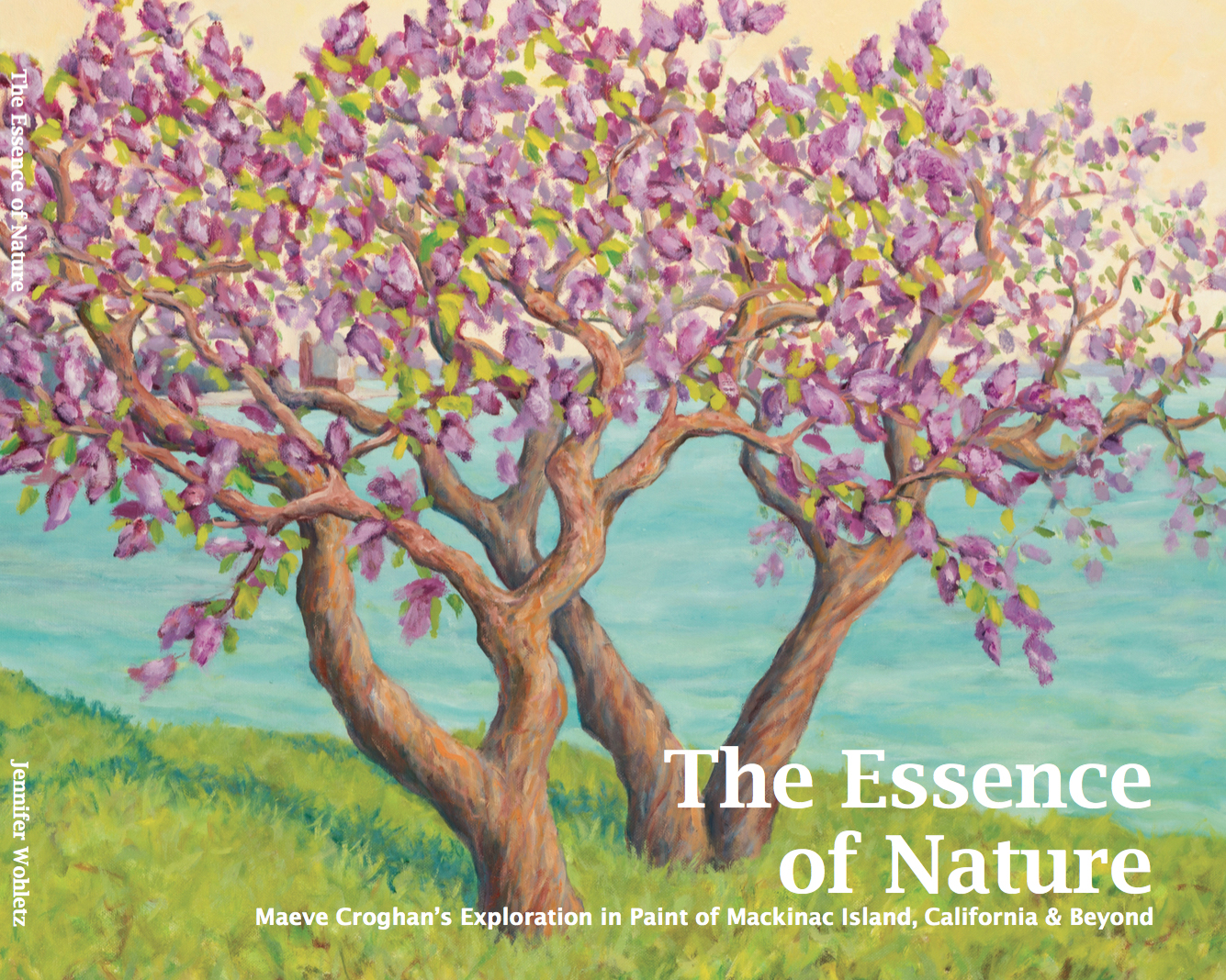 The Essence of Nature Cover