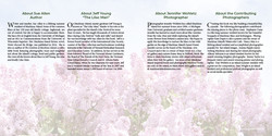 LILACS book preview 150-151 about