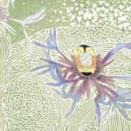 Bumblebee on Perennial Cornflower - Garden Print